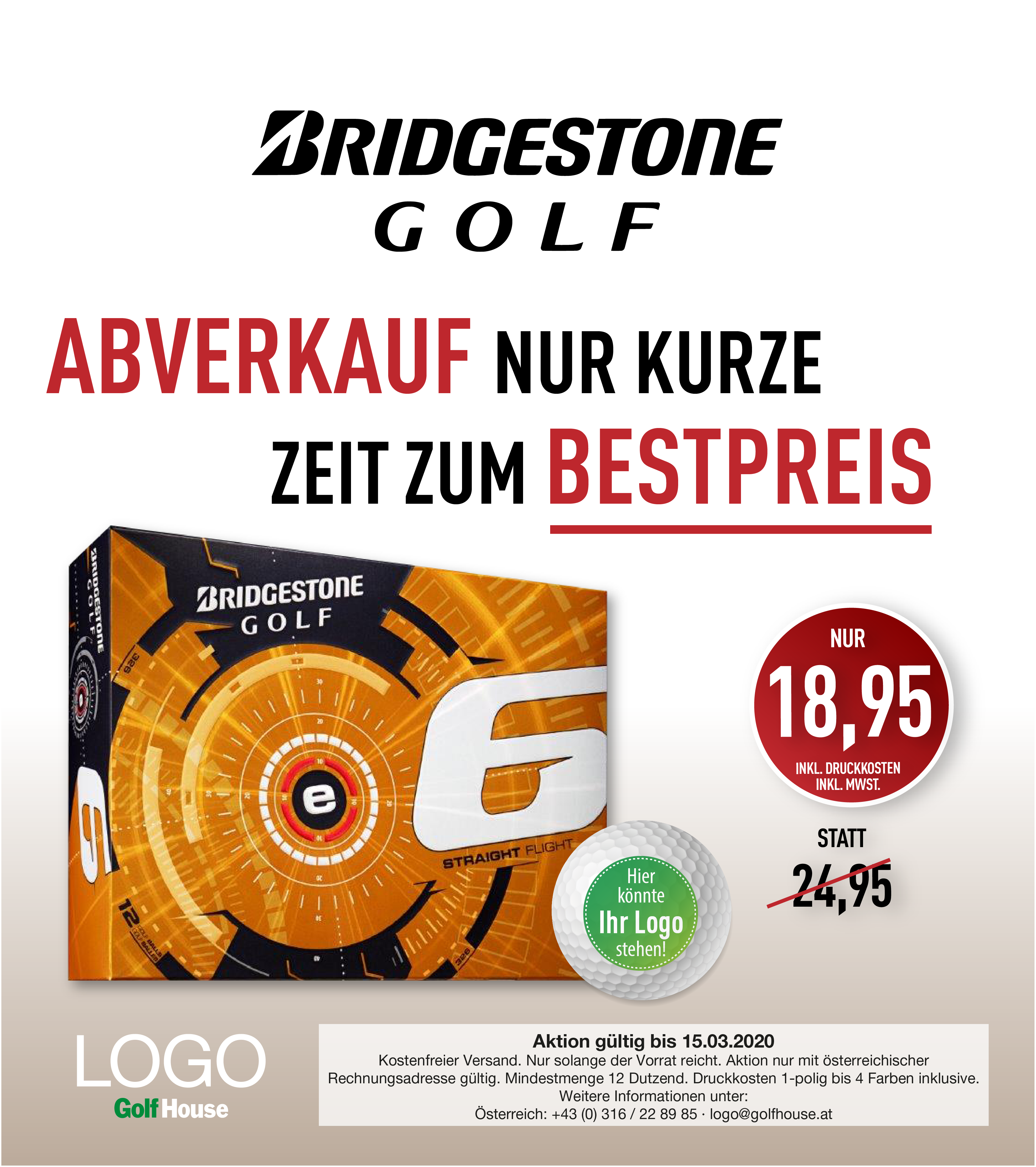 Bridgestone_e6